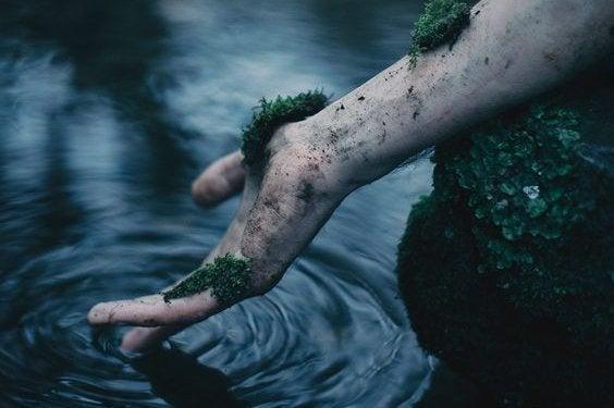 yosun tutmuş el