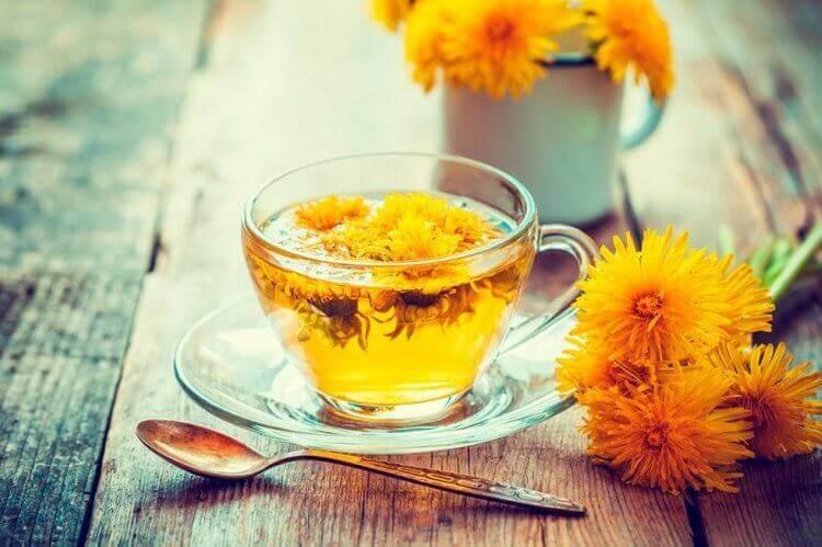 idrar söktürücü karahindiba çayı