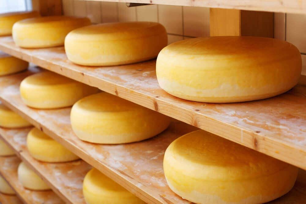 raflarda duran çedar peyniri