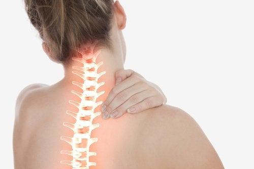 boyun ağrısı ve omurga