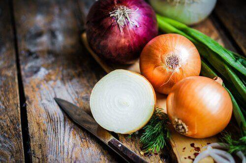 çeşitli soğanlar ve sebze çorbası