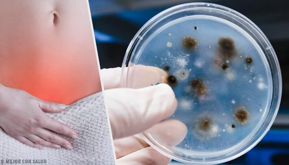 Vajinal Enfeksiyonların Çeşitleri Ve Sebeplerini Öğrenin