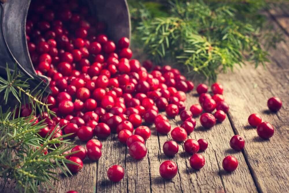 bir kova dolusu kırmızı meyve
