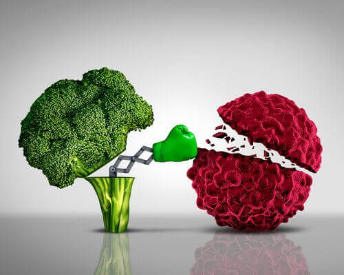 dövüşen brokoli