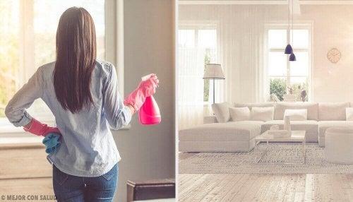 Evin Temiz Kokması İçin İpuçları
