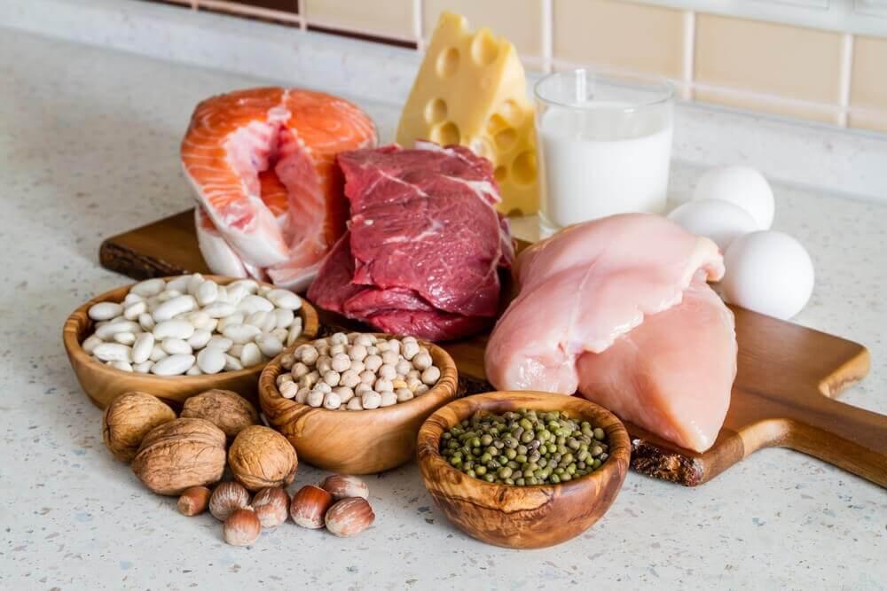 çeşitli protein kaynakları