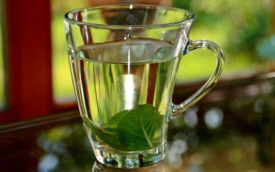 fesleğen çayı