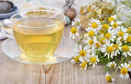 papatya ve çayı