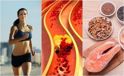 Doğal Yollarla Kolesterol Kontrolü İçin 6 Alışkanlık