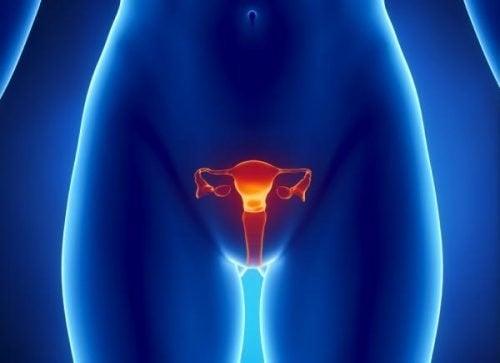 Yumurtalık Kanseri Teşhisi Nasıl Yapılır?