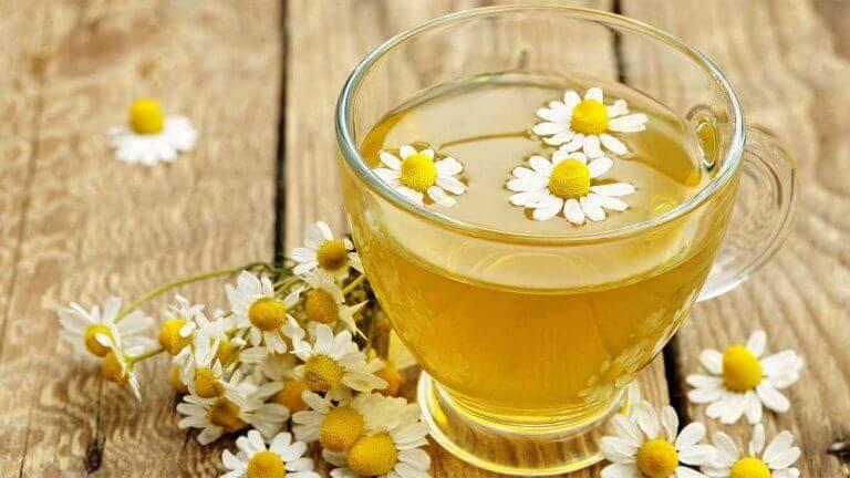 cam bardak içinde papatya çayı