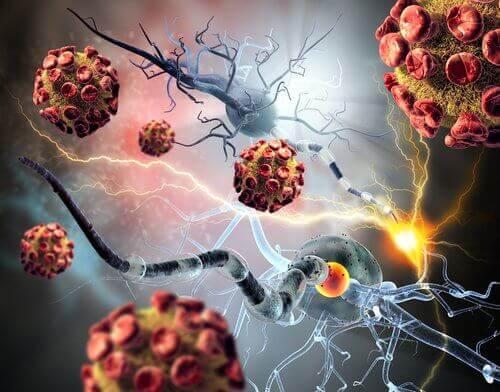 hücre ve tümörler
