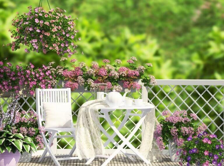 beyaz masa sandalye ve saksılarda çiçekler