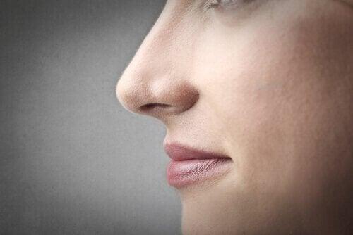 kadın burnu
