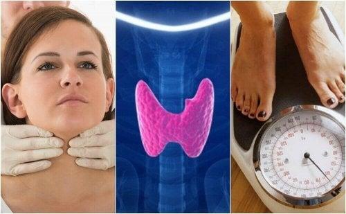 Hipotiroidizmden Muzdarip Olma İhtimalinizin 10 İşareti