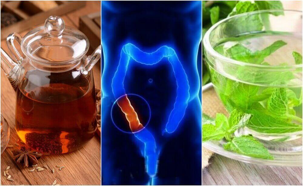 Doğal Bir Şekilde Kalın Bağırsağı Temizlemek İçin Tedavi Edici 5 Çay Yapımı