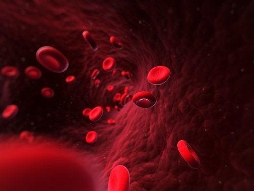 damarda kırmızı kan hücreleri