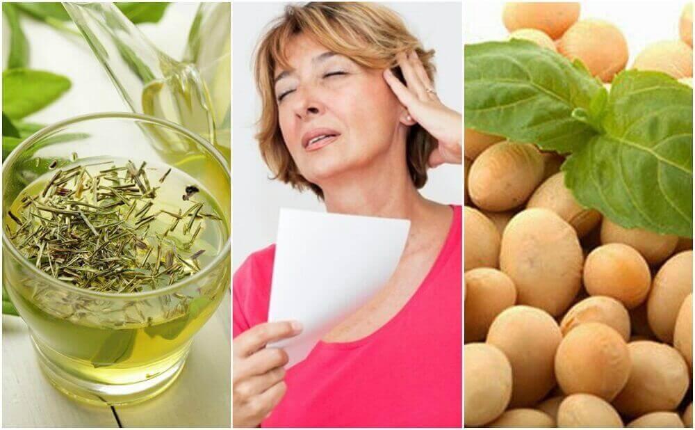 Menopozla Başa Çıkmak İçin 5 Doğal Ürün