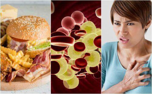Yüksek Kolesterol İçin İpuçları: Nasıl Düşürürsünüz?