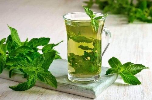Nane Çayının Sağlığa Faydalarını Keşfedin