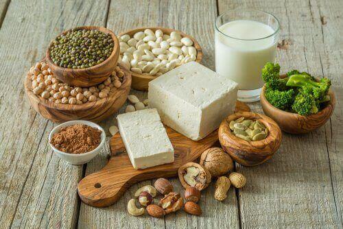 vegan diyeti ve içerdiği besinler