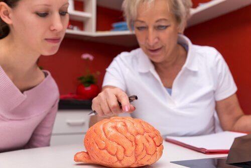 multiple skleroz ve beyin üzerindeki etkisi