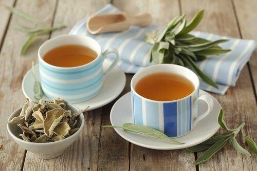yeni demlenmiş iki fincan bitki çayı