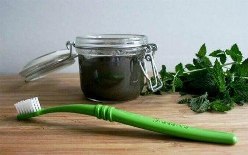 diş fırçası ev yapımı diş macunu