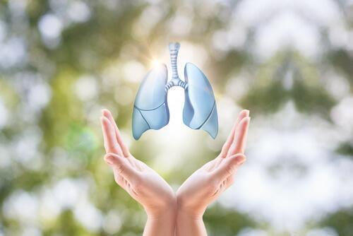 eller ve akciğer görseli