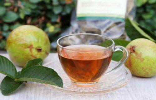 guava yaprağı çayı