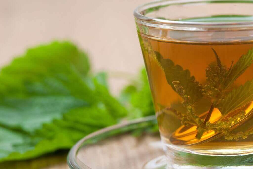 eklem ağrıları için ısırgan otu çayı