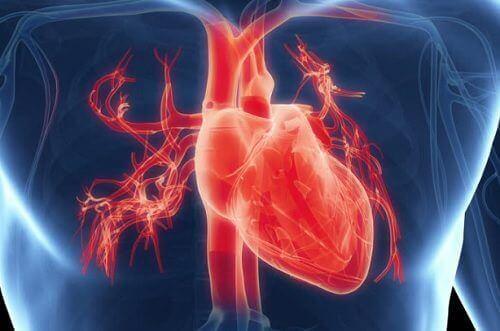Fazla Çalışmak Kalbinizi Etkileyebilir