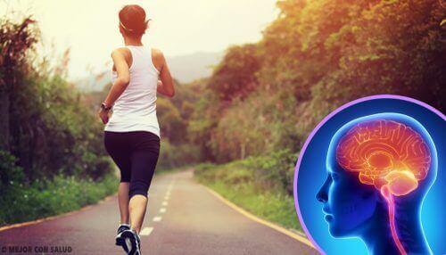 Hareketsiz Bir Yaşam Sürmek Beyninizi Değiştirir