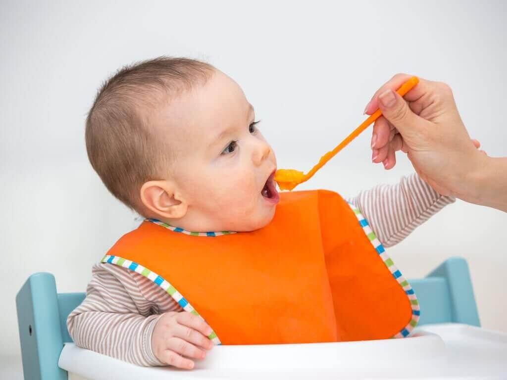 Bebeklere Meyve Püresi Yedirmenin Faydaları