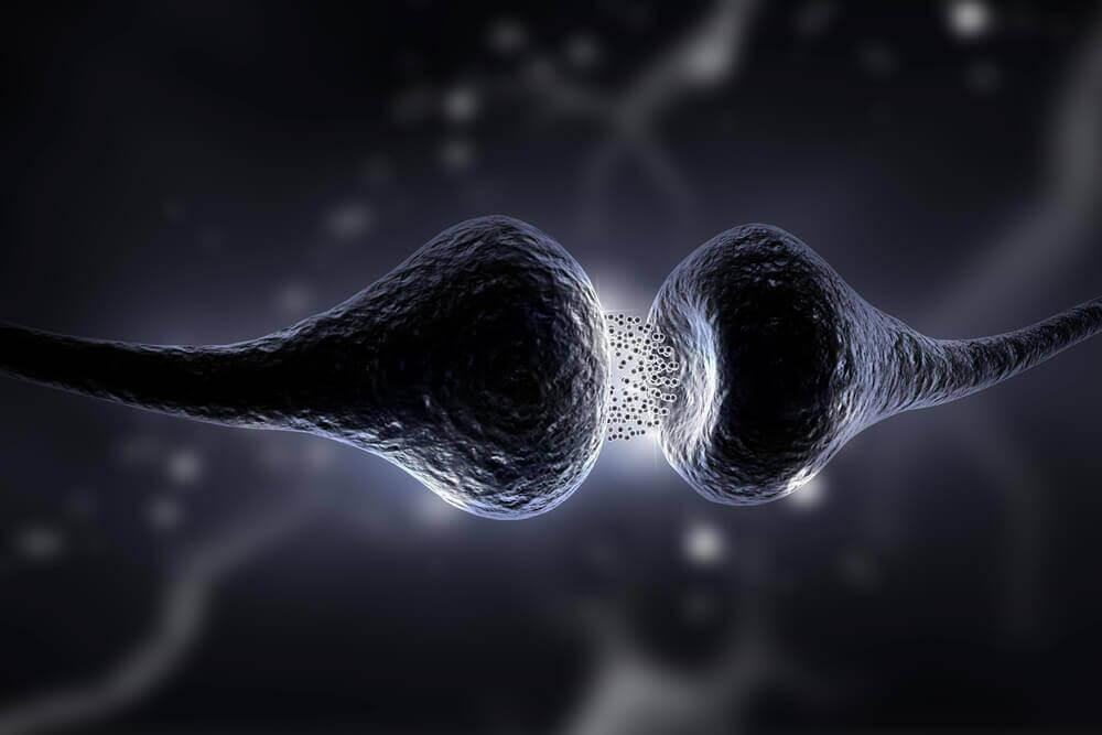 Serotonin Diyeti: Ne Olduğunu ve Faydalarını Keşfedin