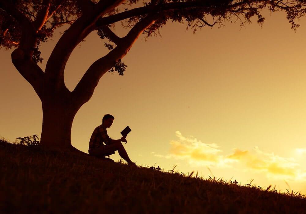 gün batımında kitap okuyan adam