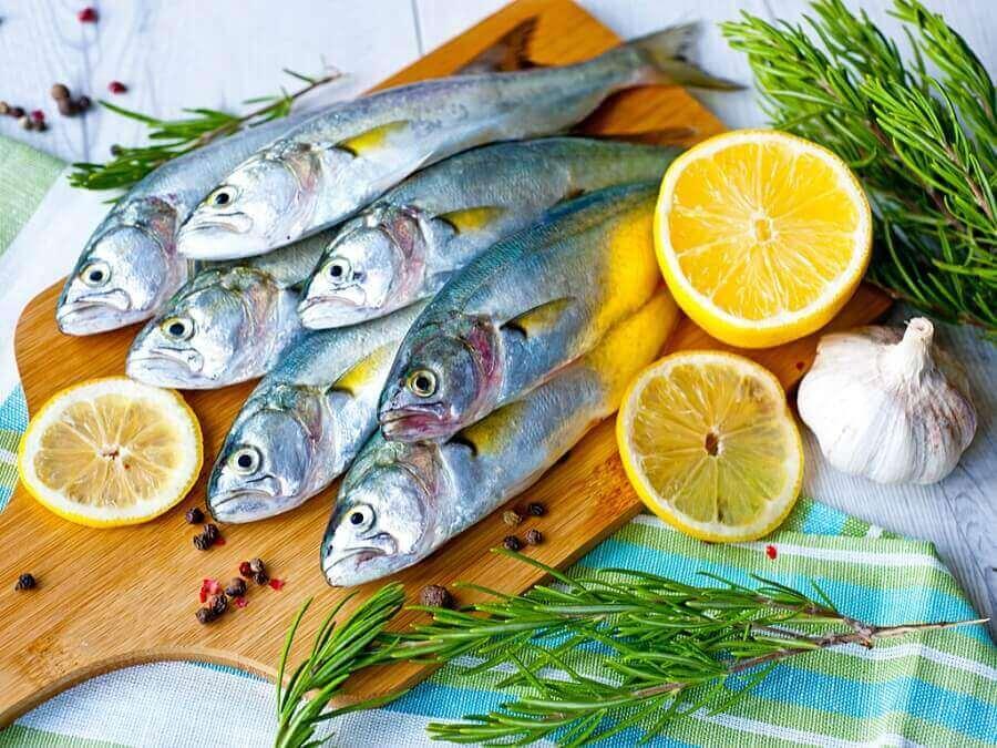 masada duran balıklar
