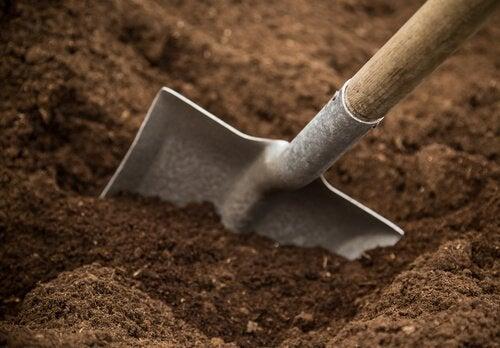 aromatik bahçenizi oluşturun kumlu toprak kürek