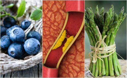 Bu 7 Gıdayı Daha Çok Tüketerek Damar Tıkanıklığını Önleyin