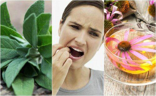 Diş Eti İltihabı İle Bu 5 Doğal Reçete Sayesinde Savaşın