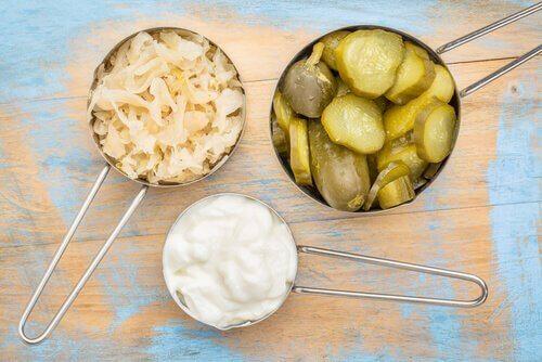 fermente yiyecekler