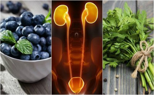 Böbrekleri ve Mesaneyi Koruyan 7 Gıda