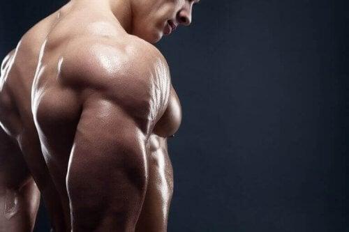 Vücuttaki Kas Miktarını Artırmak İçin 4 Lezzetli Kahvaltı