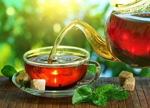 kırmızı yonca çayı