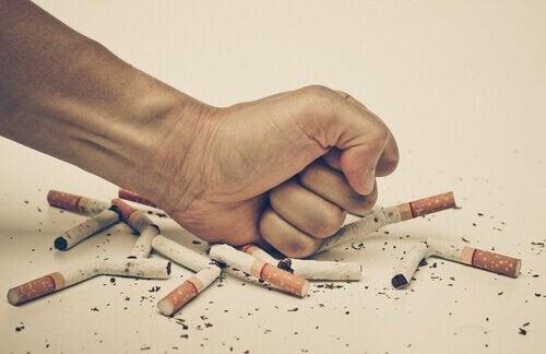 tütün ürünleri kullanımı