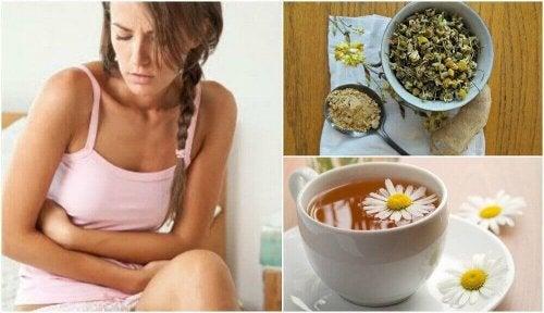 Zencefil ve Papatya Çayı ile Hassas Bağırsak Sendromundan Kurtulun