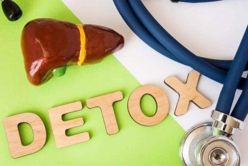 Karaciğer Detoks Diyeti Hakkında Bilmeniz Gereken Her Şey