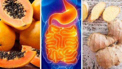 Sindirimi Rahatlatmaya Yardımcı Meyveler ve Bitkiler