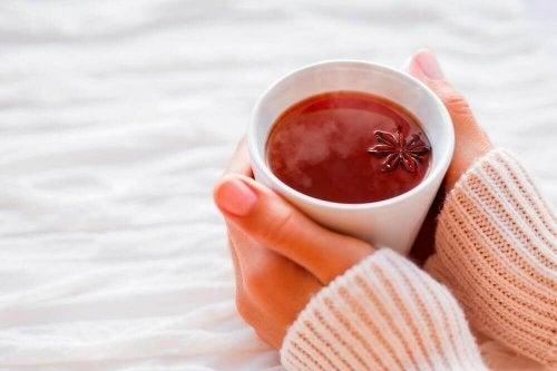 anason çayı hazımsızlıkla savaşmak