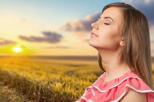 güneş tarla kadın
